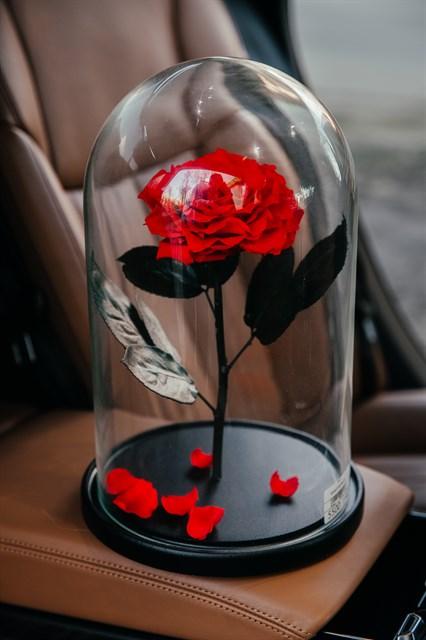 Роза в колбе - фото 7762