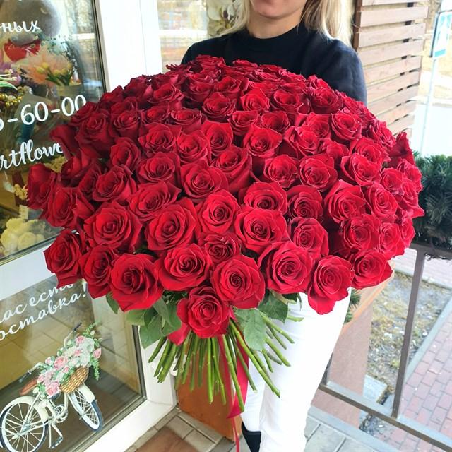 101 красная роза - фото 7960
