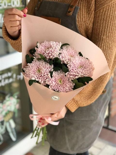 Одноголовая хризантема в упаковке - фото 8487