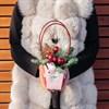 Зима в розовой сумке - фото 7535