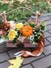 Осенняя нота - фото 8653
