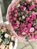 Букет из 27 кустовых роз - фото 8758